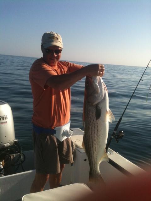 bass22 resized 600