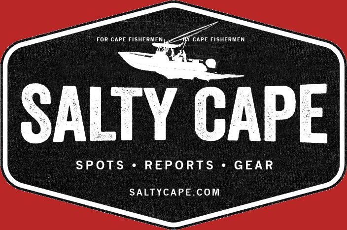 SaltyCapeLogo 704w