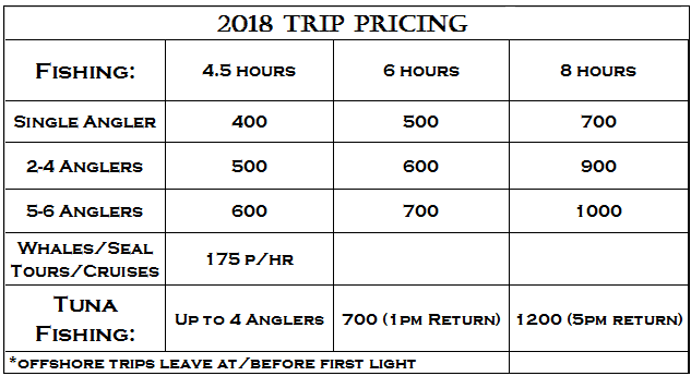 2017pricing-1.png